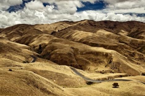 Сказочная страна холмов и лесов Новая Зеландия